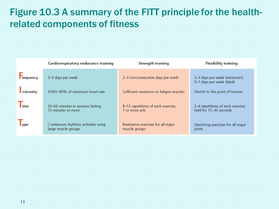 Essay on the three principles of fitness