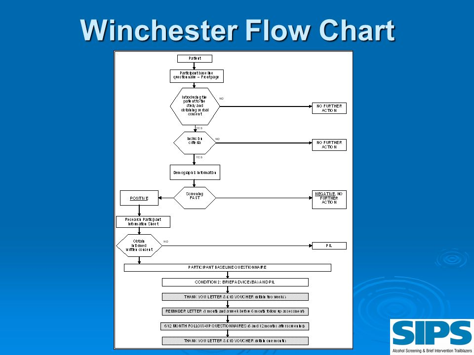 Winchester Flow Chart This flow chart is also on the back of your laminate.