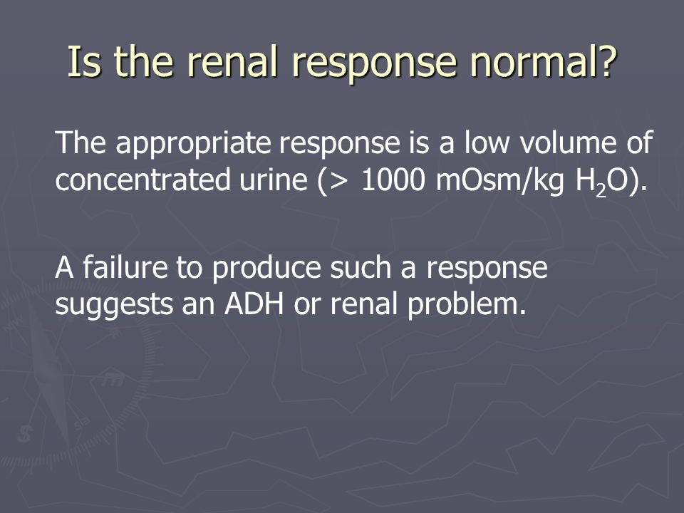 Is the renal response normal
