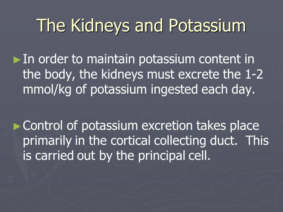 The Kidneys and Potassium