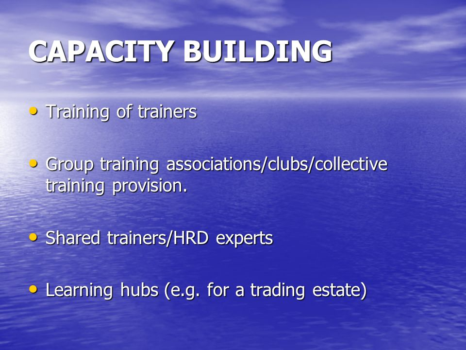 CAPACITY BUILDING Training of trainers