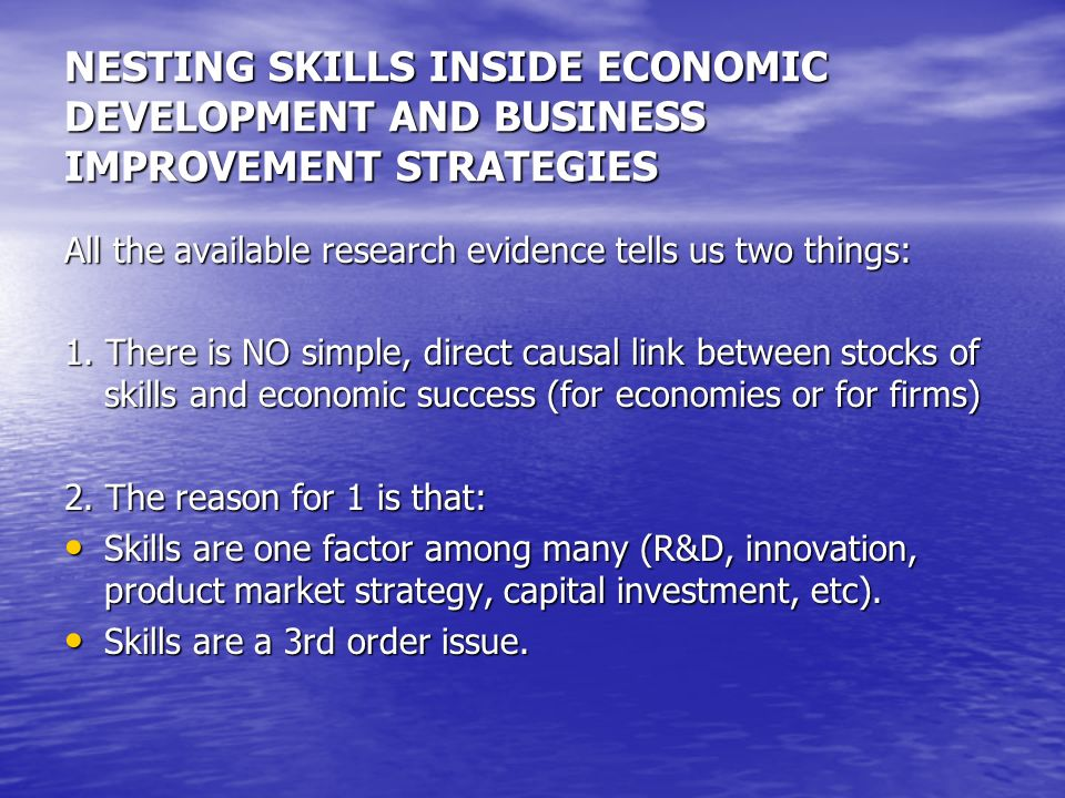 NESTING SKILLS INSIDE ECONOMIC DEVELOPMENT AND BUSINESS IMPROVEMENT STRATEGIES