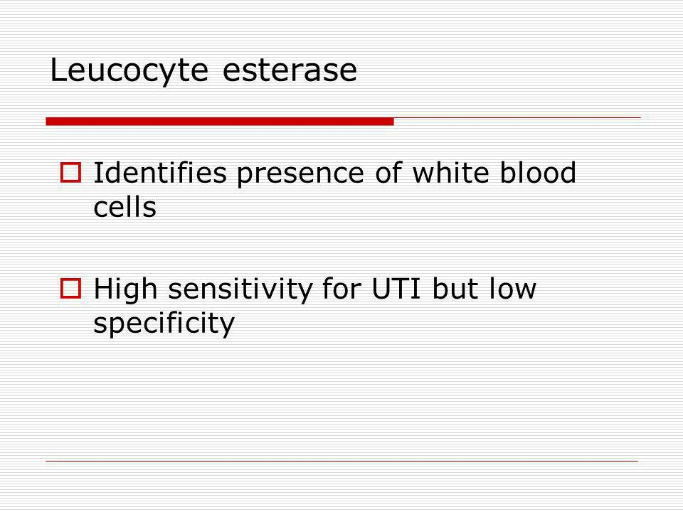 Leucocyte esterase Identifies presence of white blood cells