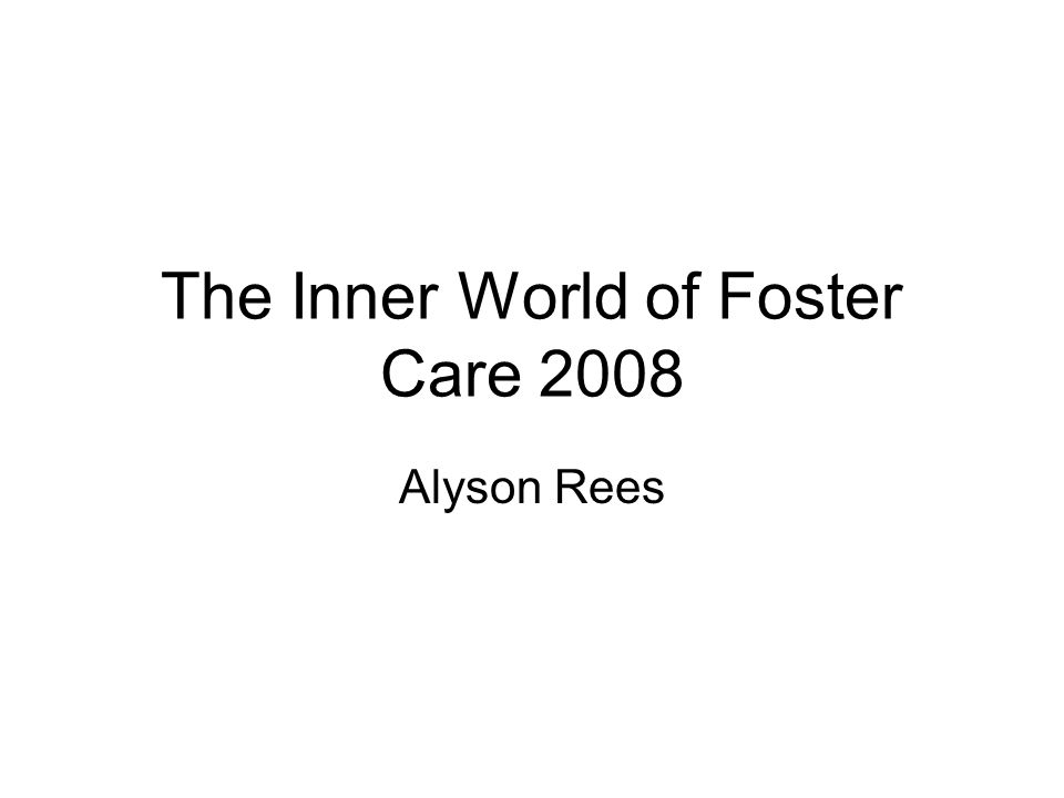 The Inner World of Foster Care 2008