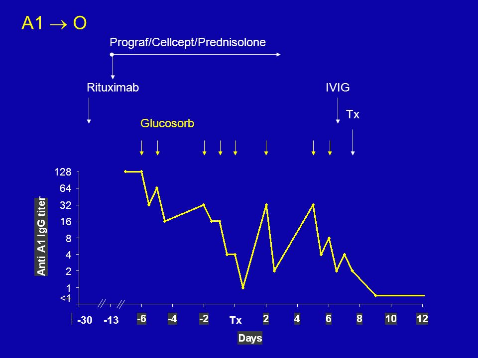 A1  O Prograf/Cellcept/Prednisolone Rituximab IVIG Tx Glucosorb 128