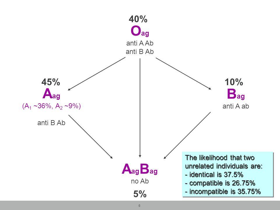Oag Aag Bag AagBag 40% 45% 10% 5% anti A Ab anti B Ab