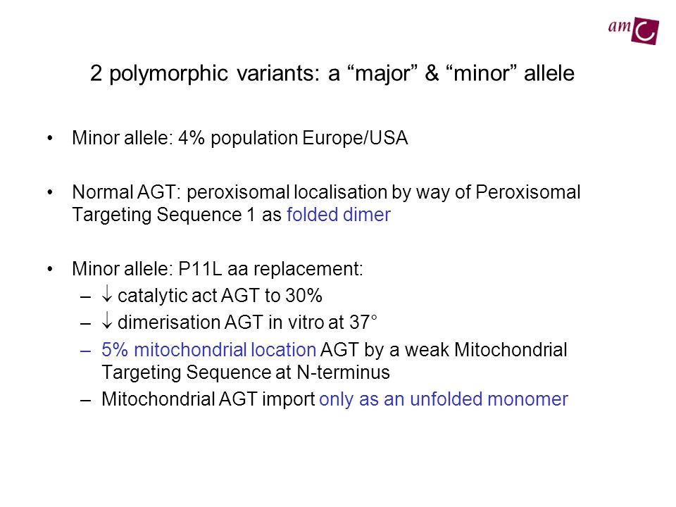 2 polymorphic variants: a major & minor allele