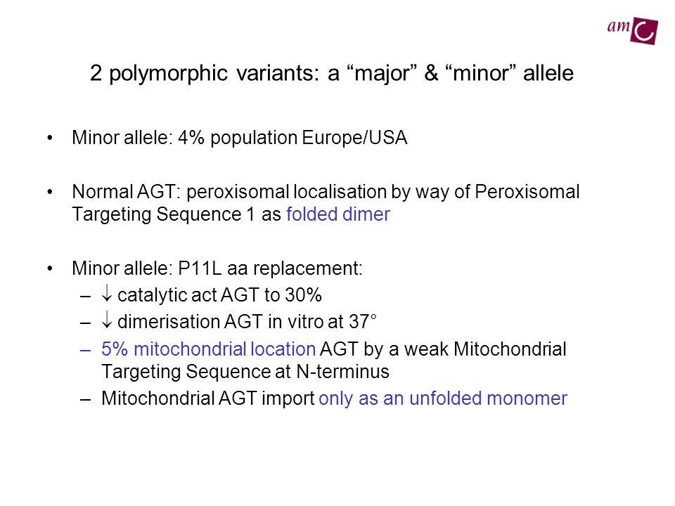 2 polymorphic variants: a major & minor allele