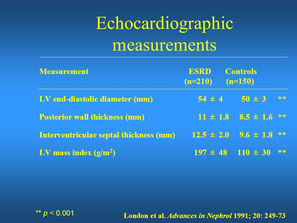 Echocardiographic measurements