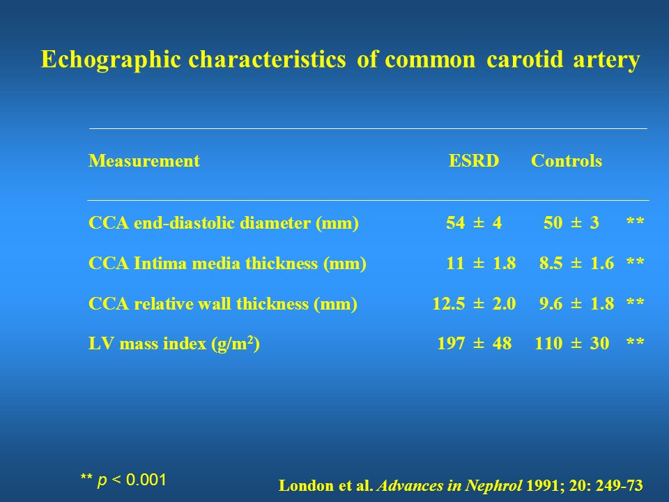 Echographic characteristics of common carotid artery