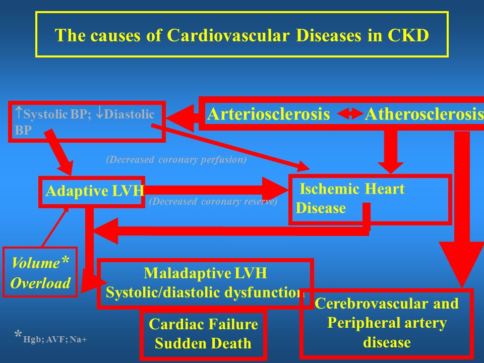 The causes of Cardiovascular Diseases in CKD