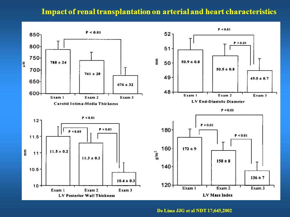 Impact of renal transplantation on arterial and heart characteristics
