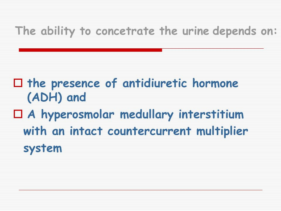 The ability to concetrate the urine depends on: