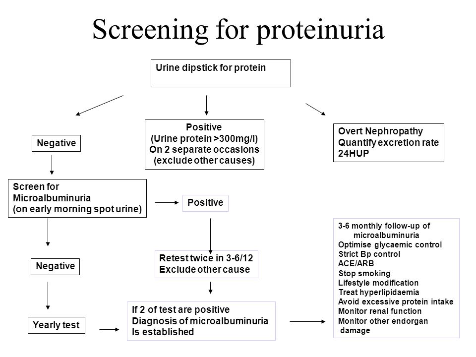 Screening for proteinuria