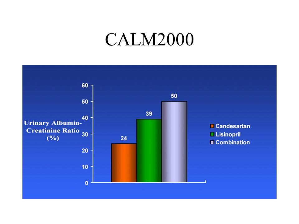 CALM2000