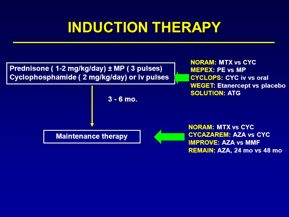 INDUCTION THERAPY Prednisone ( 1-2 mg/kg/day) ± MP ( 3 pulses)