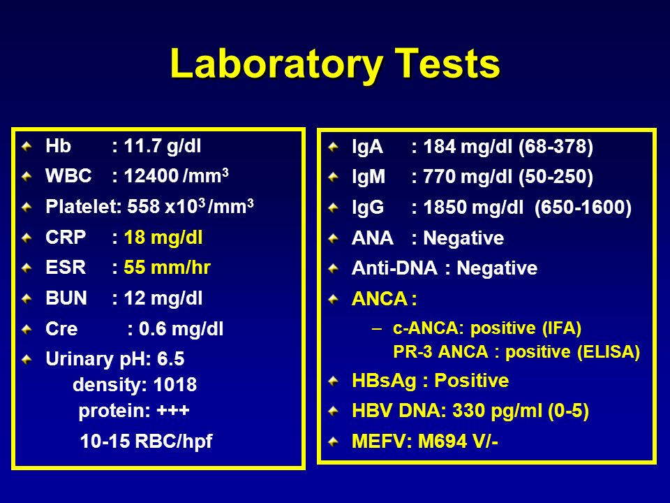 Laboratory Tests Hb : 11.7 g/dl IgA : 184 mg/dl (68-378)