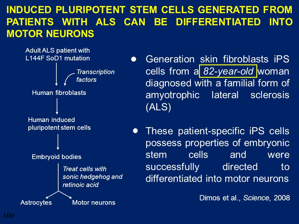 28/03/2017 INDUCED PLURIPOTENT STEM CELLS GENERATED FROM PATIENTS WITH ALS CAN BE DIFFERENTIATED INTO MOTOR NEURONS.