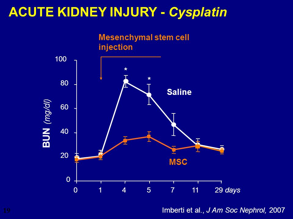 ACUTE KIDNEY INJURY - Cysplatin