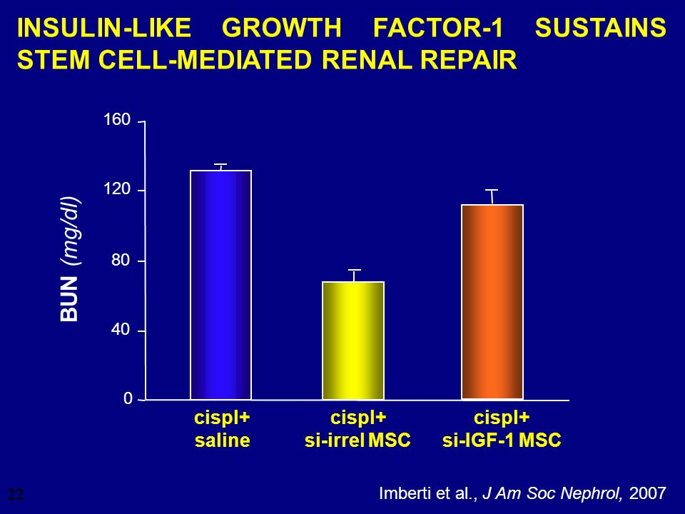 INSULIN-LIKE GROWTH FACTOR-1 SUSTAINS STEM CELL-MEDIATED RENAL REPAIR