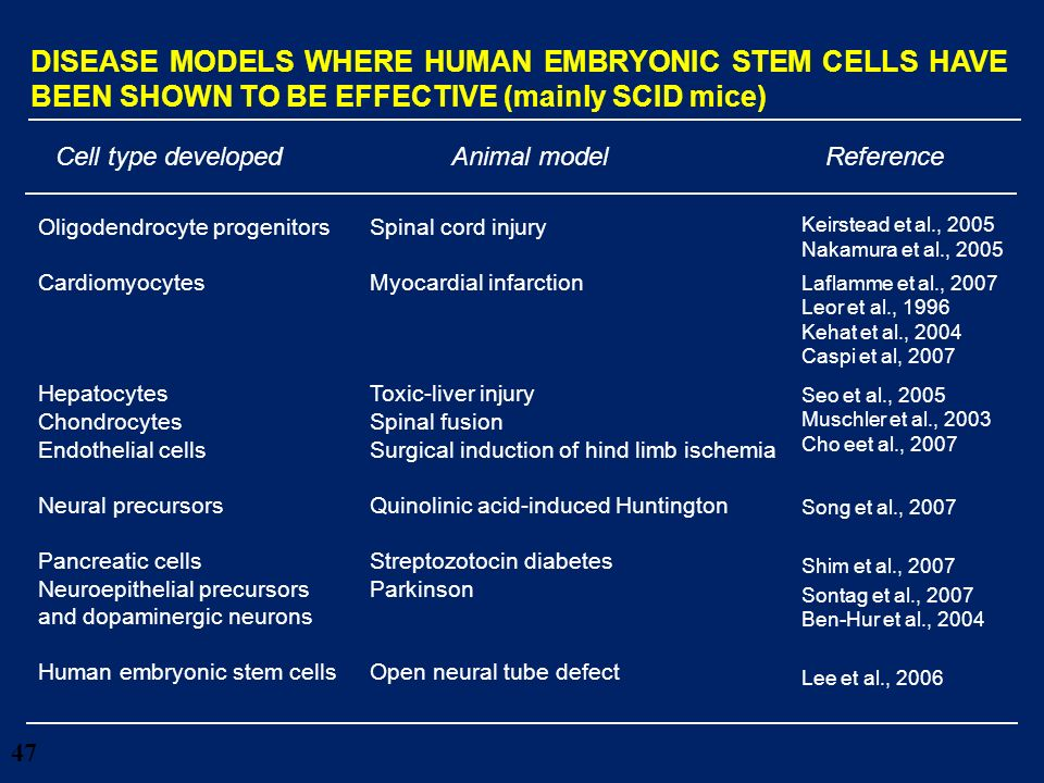 28/03/2017 DISEASE MODELS WHERE HUMAN EMBRYONIC STEM CELLS HAVE BEEN SHOWN TO BE EFFECTIVE (mainly SCID mice)
