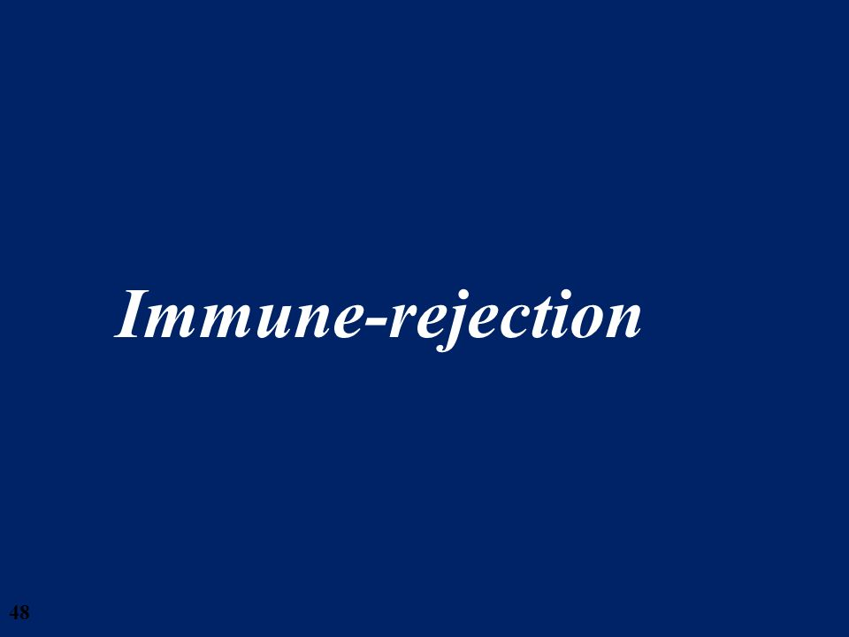28/03/2017 Immune-rejection RemuzziStamPadova0508