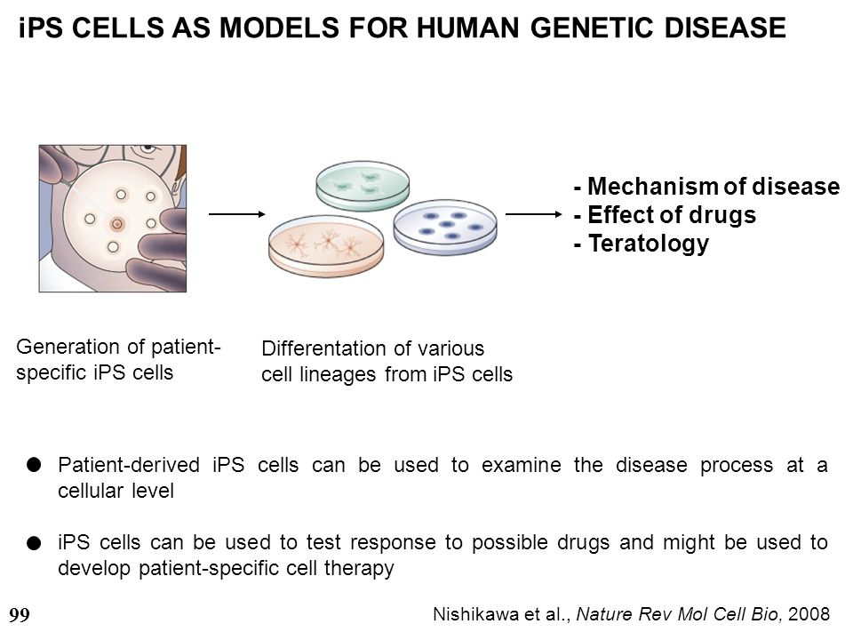 iPS CELLS AS MODELS FOR HUMAN GENETIC DISEASE