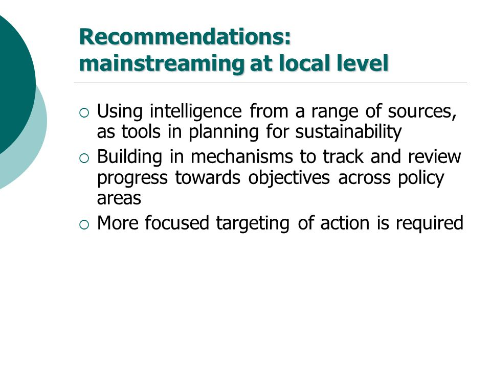 Recommendations: mainstreaming at local level