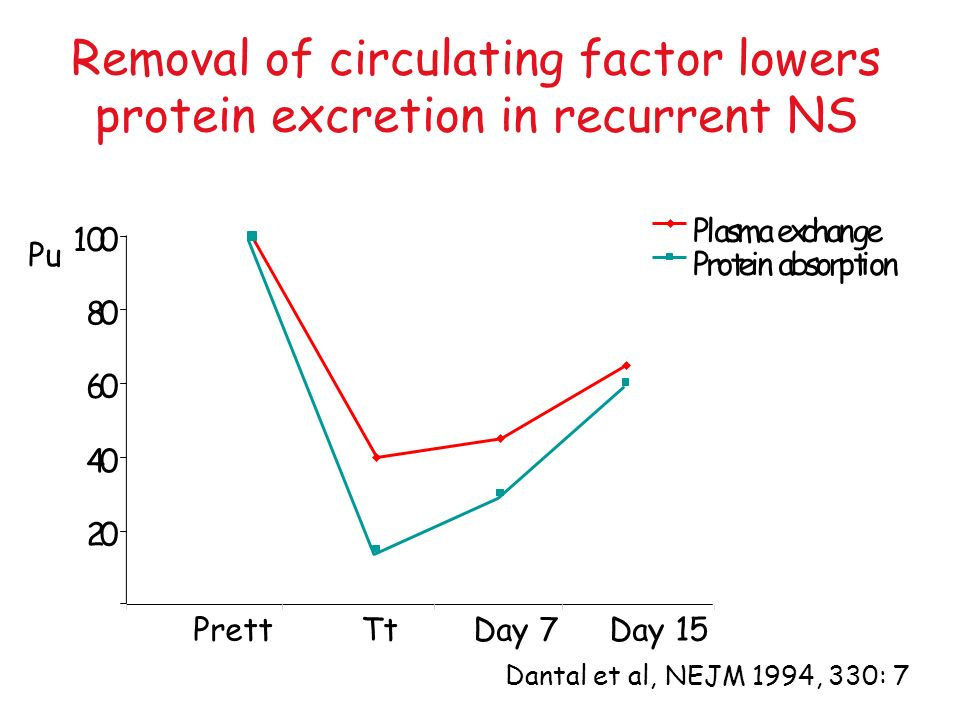 Removal of circulating factor lowers protein excretion in recurrent NS