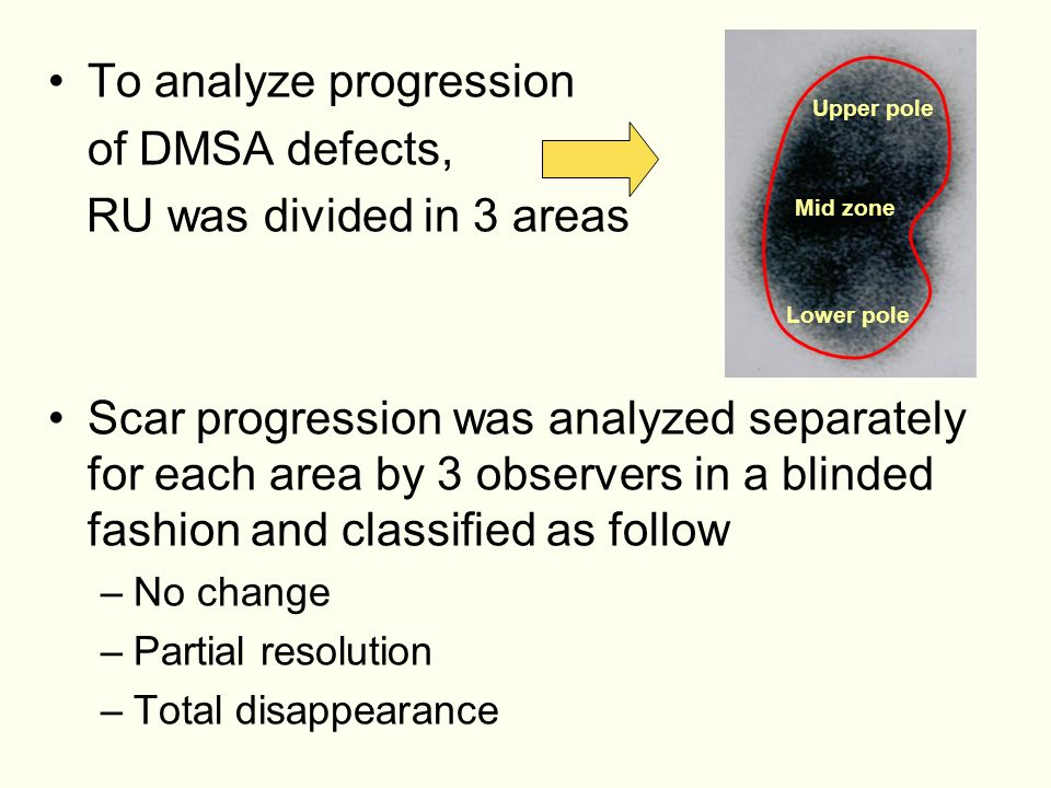 To analyze progression of DMSA defects, RU was divided in 3 areas