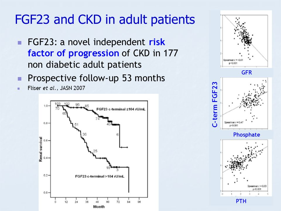 FGF23 and CKD in adult patients
