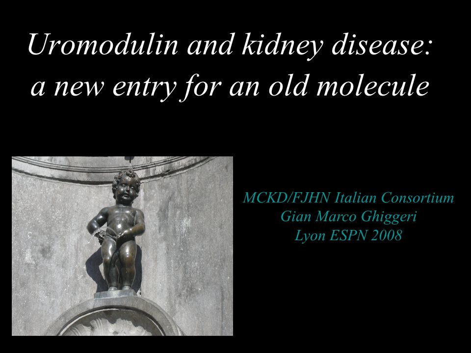 Uromodulin and kidney disease: a new entry for an old molecule