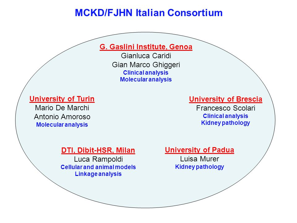 MCKD/FJHN Italian Consortium