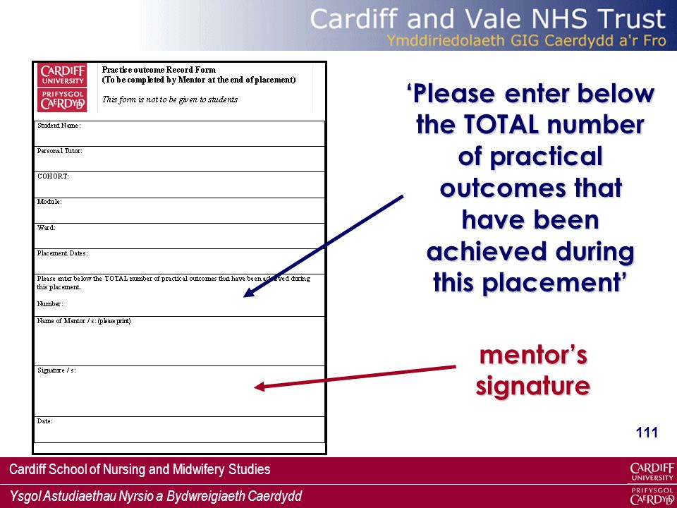 'Please enter below the TOTAL number of practical outcomes that have been achieved during this placement'