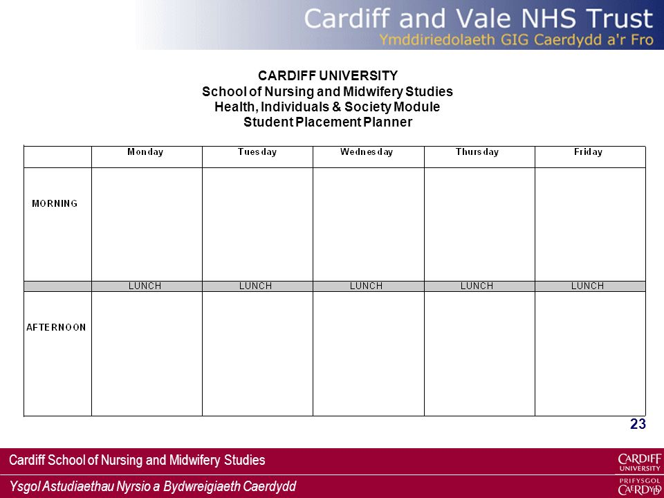 Student Placement Planner