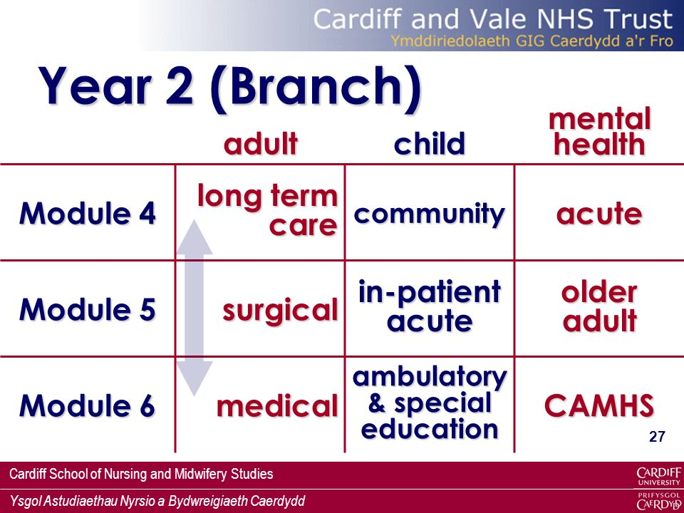 Year 2 (Branch) adult child mental health Module 4 long term care