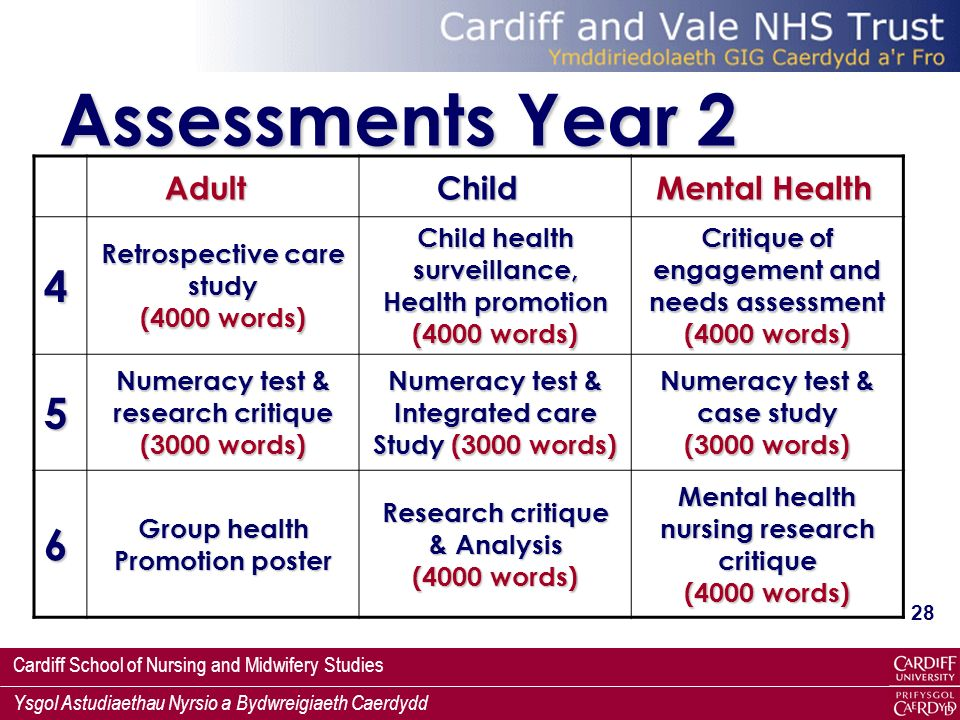 Assessments Year 2 4 5 6 Adult Child Mental Health