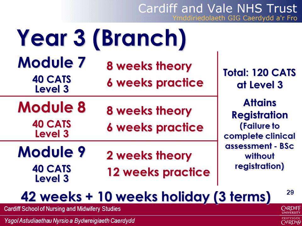 Year 3 (Branch) Module 7 Module 8 Module 9