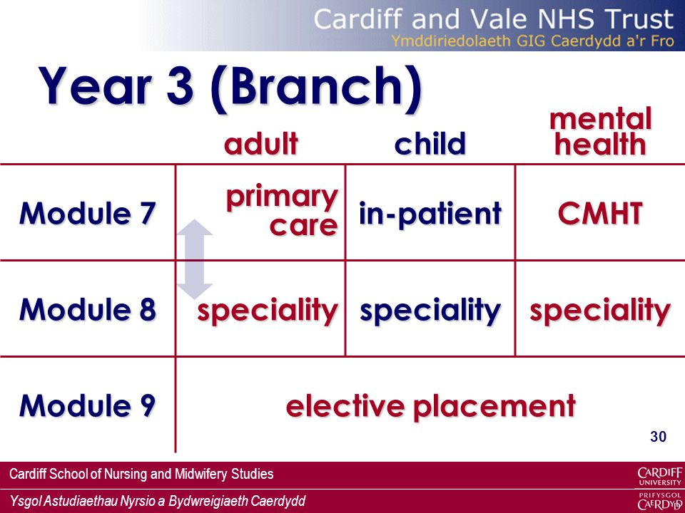 Year 3 (Branch) adult child mental health Module 7 primary care