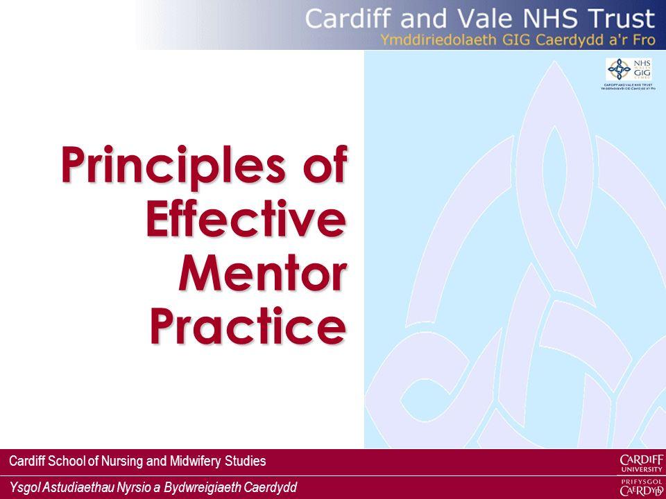 Principles of Effective Mentor Practice