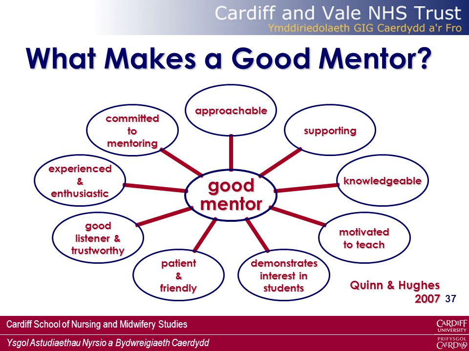 Accountability and assessment in nursing mentorship
