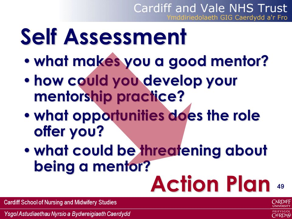 Self Assessment Action Plan what makes you a good mentor