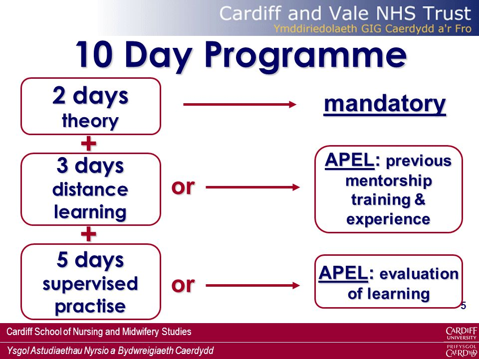 10 Day Programme + + 2 days theory mandatory or or