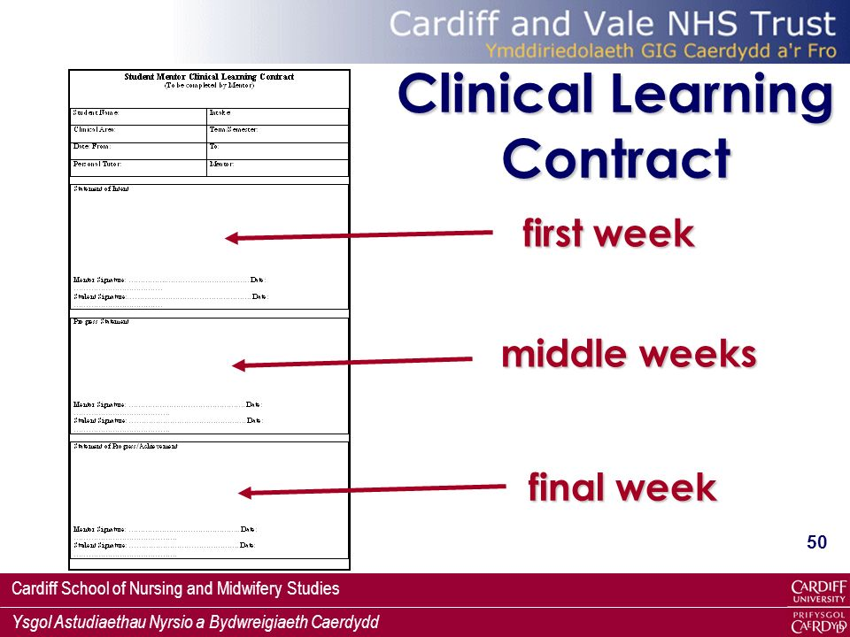 Clinical Learning Contract