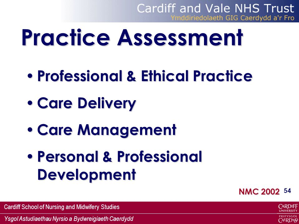 Practice Assessment Professional & Ethical Practice Care Delivery
