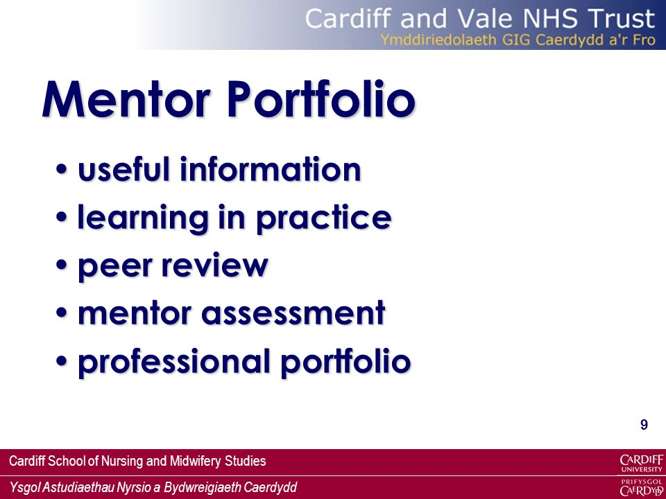 Mentor Portfolio useful information learning in practice peer review