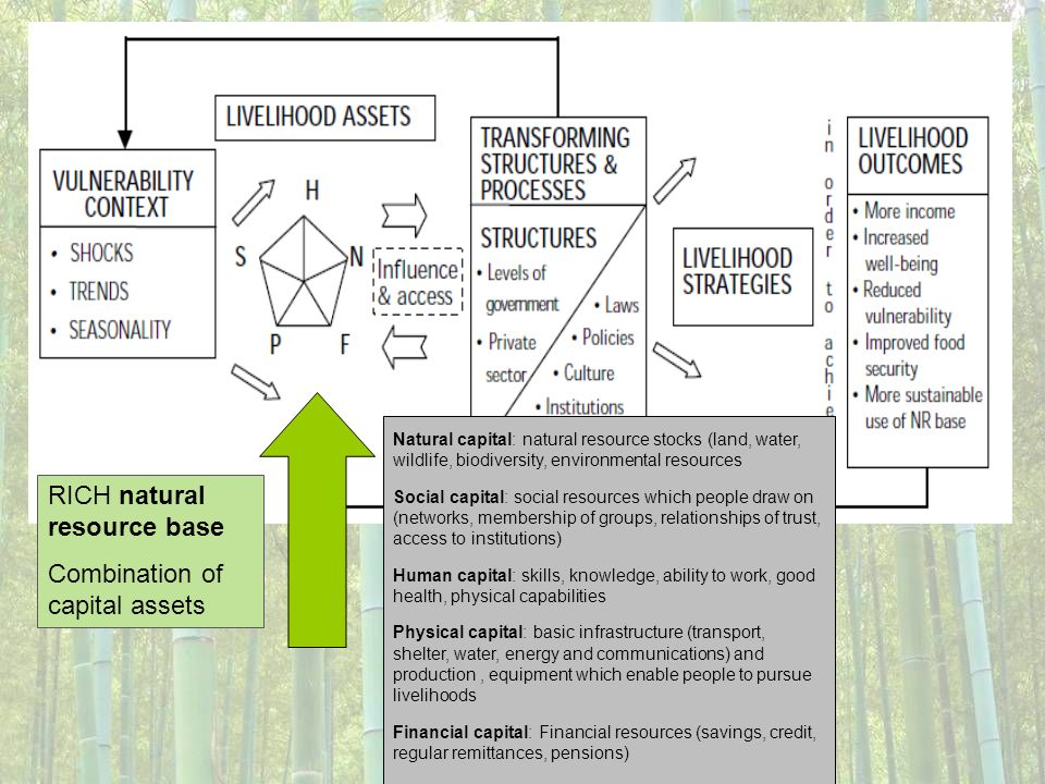RICH natural resource base Combination of capital assets