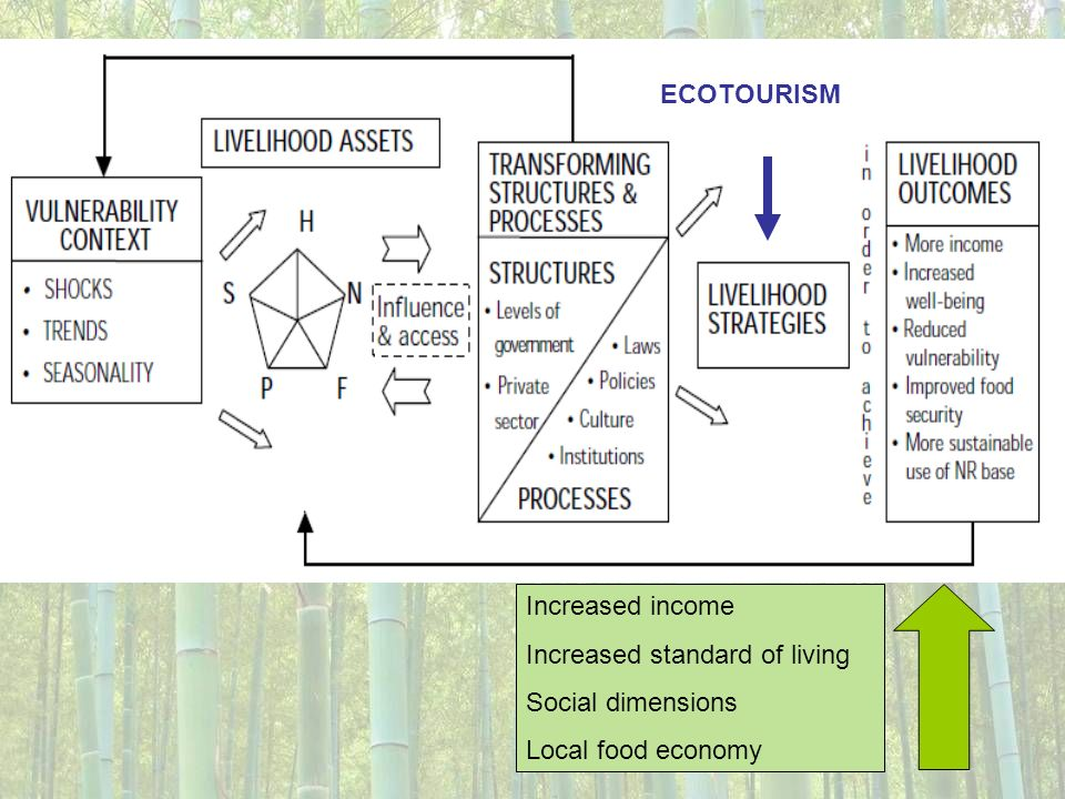 ECOTOURISM Increased income Increased standard of living Social dimensions Local food economy