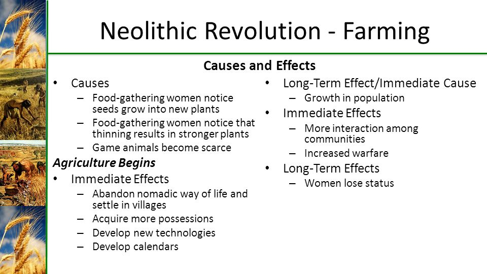 causes and impact of the neolithic revolution Effects of the neolithic revolution on society the traditional view is that the shift to agricultural food production supported a denser population, which in turn supported larger sedentary communities, the accumulation of goods and tools, and specialization in diverse forms of new labor overall a population could increase its.
