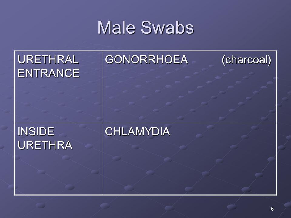 Male Swabs URETHRAL ENTRANCE GONORRHOEA (charcoal) INSIDE URETHRA